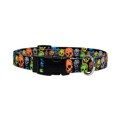 extra small neon dog collar - 4