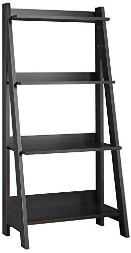 Desk Ladder Bookcase (Bush Furniture Alamosa Ladder Bookshelf)