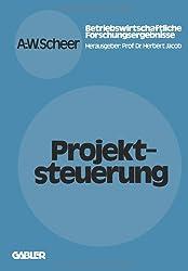 Projektsteuerung (Betriebswirtschaftliche Forschung zur Unternehmensführung) (German Edition)