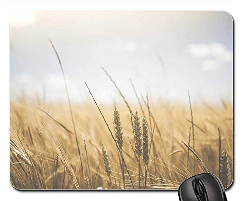(Mouse Pad - Agriculture Bread Cereal Countryside Crop Farm)