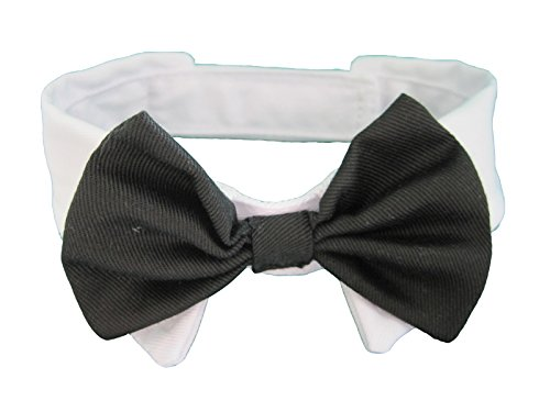 Vedem Small Dog Cat Pet Bow Tie Collar