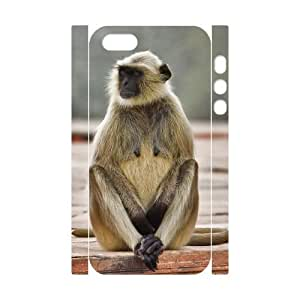 3D Bumper Plastic Customized Case Of Monkey for iPhone 5,5S