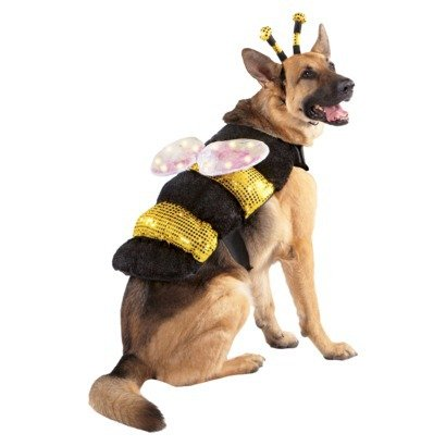 LED Bee with light up wings Pet costume - size S ()