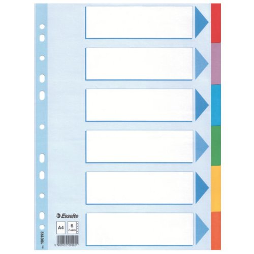 Leitz Kartonregister Standard Blanko, A4, Karton, 6 Blatt, weiss