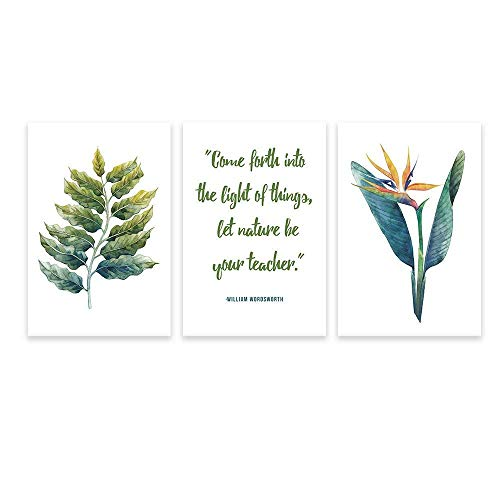 3 Panel Tropical Plant Leaves and Inspirational Quotes x 3 Panels