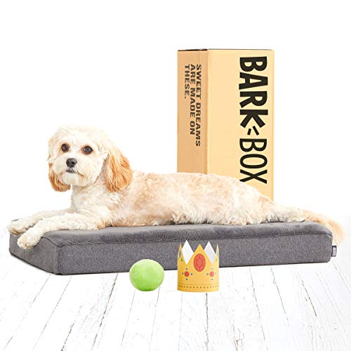 BarkBox Memory Foam Dog Bed | Plush Orthopedic Joint Relief Mattress Machine Washable + Removable Cover; Water Resistant Lining, Includes Squeaker Toy | Small | Grey