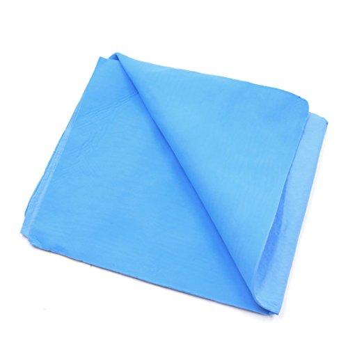 Amazon.com: eDealMax 39cm x 33cm sintética de Lavado en seco Gamuza Auto Car Care Wipe toalla limpia Azul: Automotive