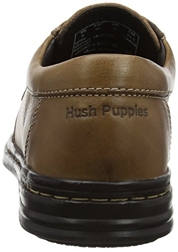 Marron Hush Hanston George Homme brown Puppies Derbys zX70nqXr