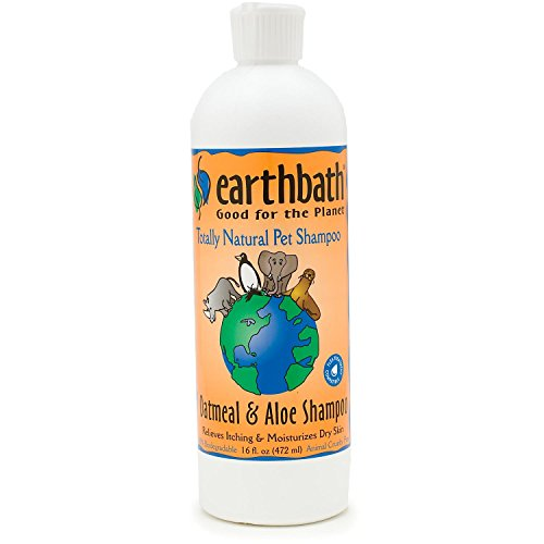 Earthbath-Oatmeal-Aloe-Shampoo-Vanilla-Almond-16-Ounce