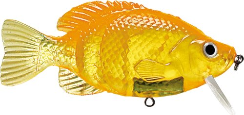 Storm Kickin Slab 04 (Goldfish, Size- 4), Outdoor Stuffs