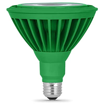 Feit PAR38/G/LEDG5 LED Green PAR38 Reflector