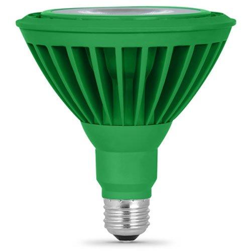 FEIT PAR38/G/LEDG5 LED Green PAR38 Reflector