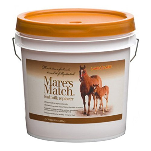MARE'S MATCH LAND O' LAKES Enhanced Formulation Milk Replacer for young Horses - Fortified with 24% milk protein and 16% homogenized fat - Highly Digestable - 8 LB