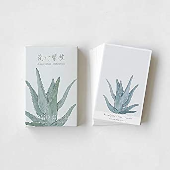 Christmas Succulent Gift.28 Pcs Box Green Succulent Plants Leaves Lomo Small Cards