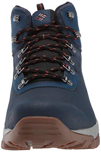 Columbia Men S Newton Ridge Plus Ii Waterproof Hiking Boot Dark Brown Bright Copper 9 M Us Buy Online At Best Price In Uae Amazon Ae