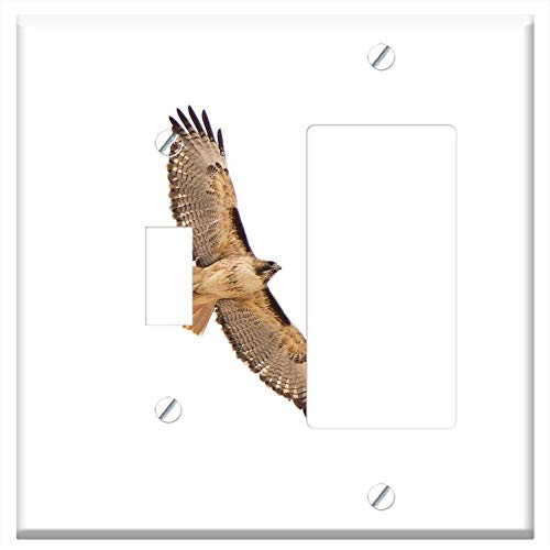 1-Toggle 1-Rocker/GFCI Combination Wall Plate Cover - Red-Tailed Hawk Flying Bird Predator Raptor