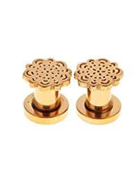 Dovewill 2pcs Gold Stainless Steel Screw Tunnels Ear Expander Stretch Plugs Piercing Gauge