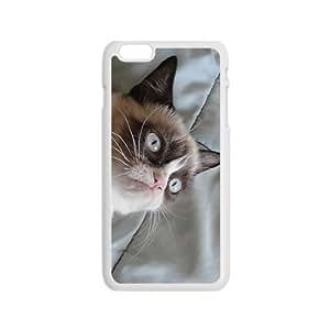 Peculiar Cat Hight Quality Plastic Case for Iphone 6
