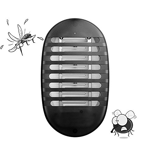 Outdoor Insect Killer Lamp in Florida - 9