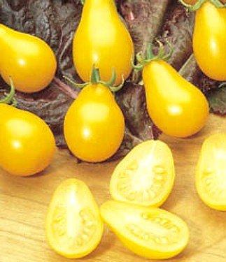 (Yellow Pear Tomato 90 Seeds - GARDEN FRESH PACK! )