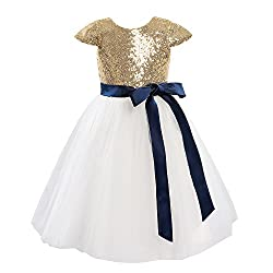 Ivory Cap Sleeves Sequin Flower Girl Dress