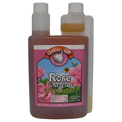 Garlic GP Rose Fungicide - Rose Gp