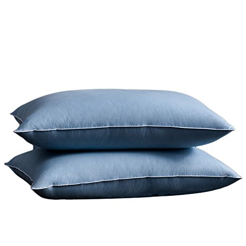 SNOWMAN Luxury Goose Down Pillow Sleeping (Set of 2) Queen Size Pillow - 100% Cotton Shell Anti-allerge Breathable Fresh, (Blue:2 Queen Pillows, Blue)