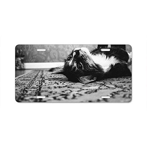 BENGAL CAT BLACK ANIMAL Metal License Plate Frame Tag Holder