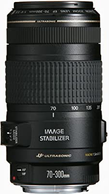 Canon 70-300mm f/4-5.6 IS EF Telephoto Zoom Lens USM (White Box) Bulk Packaging by Canon - Slr Lens