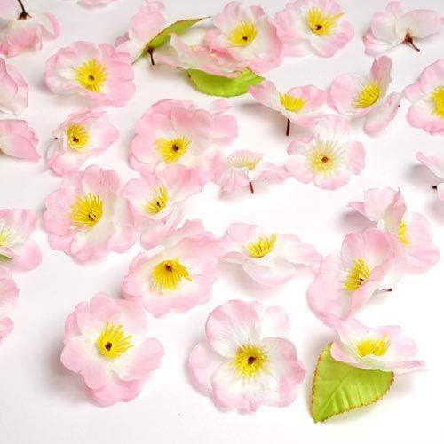 花びらセット 桜