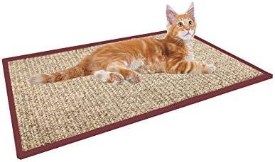 Amazon.com: Treasborn - Rascador para gatos de sisal grueso ...