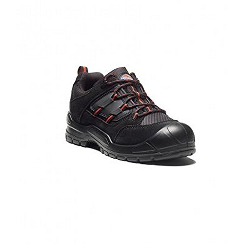 Gray Shoes Everyday Dickies Black Mens qU0nAt