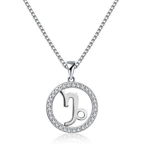Zodiac Signs Pendant Necklace, Capricorn Constellation Charm Horoscope Jewelry Womens Platinum Plated 925 Sterling Silver Box Chain, 18