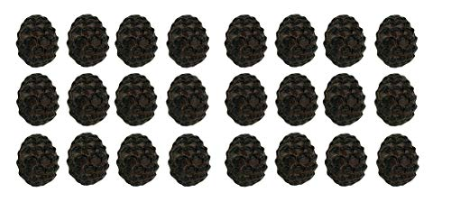ustic Brown Woodland Pine Cone 24 Piece Cast Iron Drawer Pull Set ()