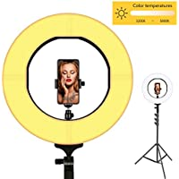 Ring Light, LOKFWORLD Bi-color Dimmable LED Ring Light 14 Inches Photography Ring Light with Stand Cellphone Holder Hot Shoe Adapter for Outdoor Shooting Live Streaming Make Up and YouTube Video