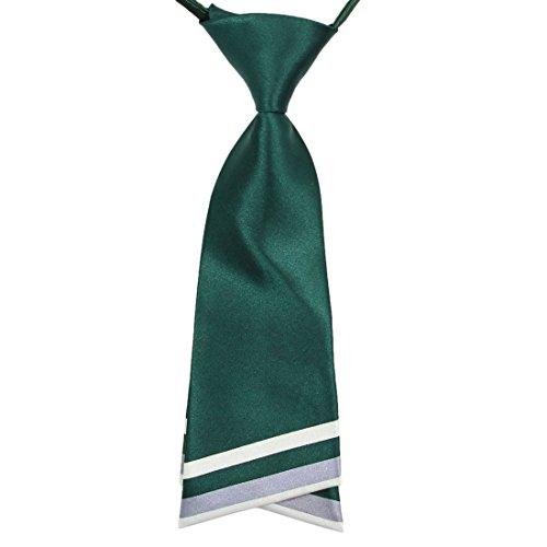 HANERDUN Womens Bowtie Ladies Pre Tied Silk Necktie Costume Accessory Gift (Fancy Dress Costume Ideas For Women)