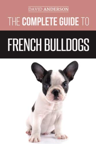 french bulldog guide - 3