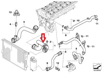 BMW 11-53-7-500-733 Water Hose by BMW (Image #1)