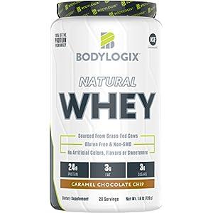 Bodylogix Natural Grass Fed Whey Protein Powder