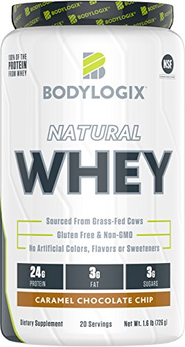 Bodylogix Natural Grass Fed Whey Protein Powder