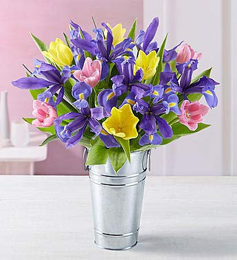 1800Flowers Fanciful Spring Tulip & Iris Fresh Flower Bouquet with French Flower Pail (10 Tulips and 10 Irises)