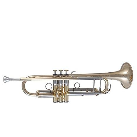 Music World mwtr de 611 en B trompeta - brillante oro latón lacado: Amazon.es: Instrumentos musicales