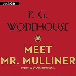 Meet Mr. Mulliner