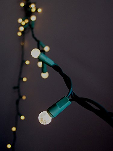 Strings Light Led G12 (Fantado 70 Outdoor Warm White LED G12 Raspberry String Lights, 23.6 FT Green Cord, Weatherproof, Expandable by PaperLanternStore)