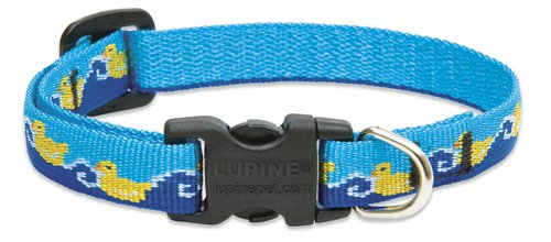 Just Ducky - LupinePet 1/2-Inch Just Ducky 10-16-Inch Adjustable Dog Collar for Small Dogs