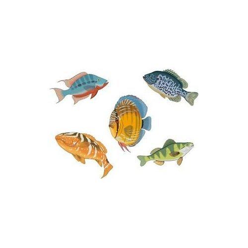 Smarts-Art Lot de 5 autocollants pour carrelage de salle de bain Motif poisson tropicaux Setf4 chambre Smart-De-Signs EXPSFD009425