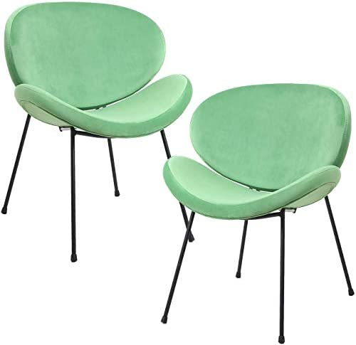 HOMEFUN Velvet Modern Chair