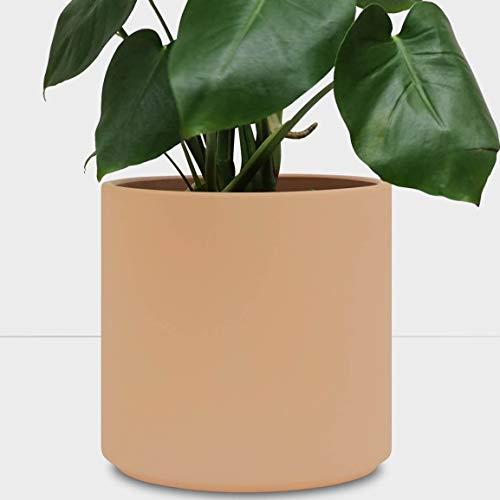 PEACH & PEBBLE Indoor Plant Pot (12.5