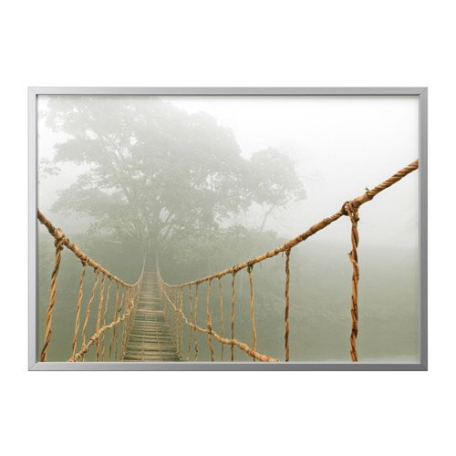 Ikea Picture and frame, jungle journey, aluminum color 55x39 ¼ '' by IKEA (Image #2)
