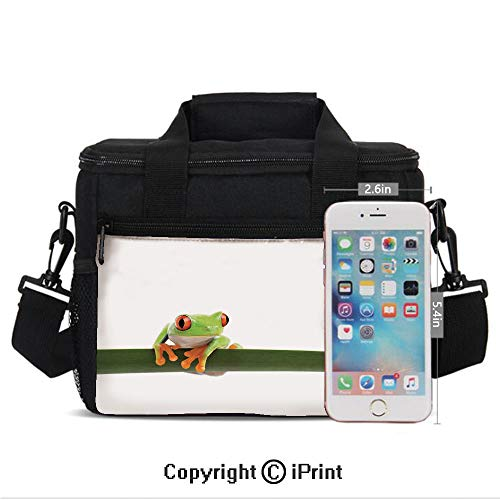 (Insulated Lunch Bag Box for Men and Women, Red Eyed Tree Frog Perches on a Long Slim Leaf Tropic Rainforest Animal Wild Life Photo converts to a Tote Handbag - Easy to Clean Polyester Cloth for Adult)